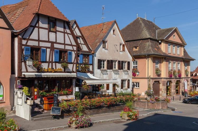 Holiday homeFrance - Alsace: Magnifique Appartement Alsacien  [1]