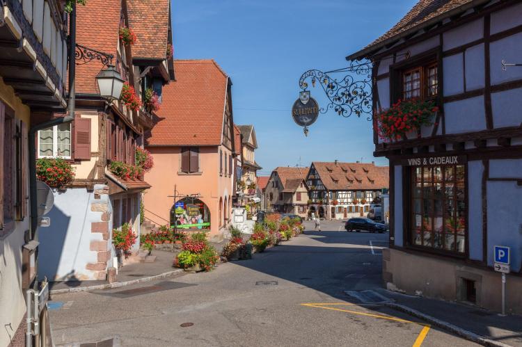 Holiday homeFrance - Alsace: Magnifique Appartement Alsacien  [49]