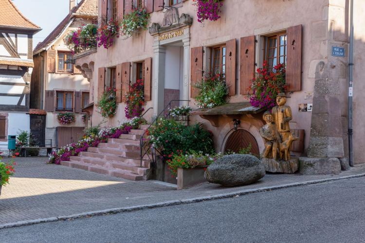 Holiday homeFrance - Alsace: Magnifique Appartement Alsacien  [15]