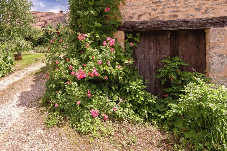 VakantiehuisFrankrijk - Dordogne: La Bergerie  [27]