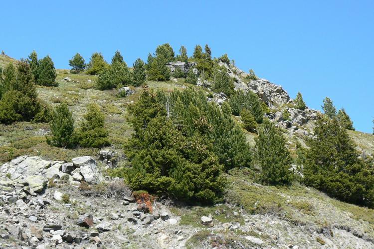 VakantiehuisFrankrijk - Noord Alpen: Le Hameau des Eaux d'Orelle 4  [20]