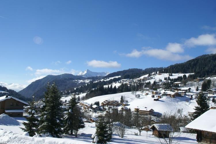 Holiday homeFrance - Northern Alps: Chalet Sherwood Forest  [7]