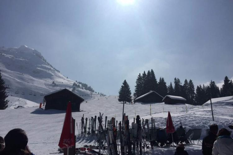 Holiday homeFrance - Northern Alps: Chalet Sherwood Forest  [6]