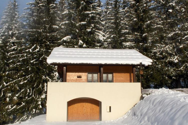 Holiday homeFrance - Northern Alps: Chalet Sherwood Forest  [5]