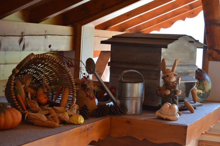VakantiehuisFrankrijk - Noord Alpen: Chalet du Merle  [34]