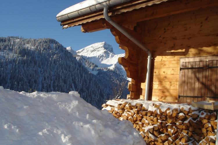 Holiday homeFrance - : Chalet Alban  [35]