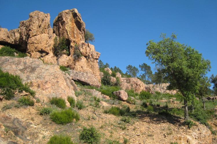 Holiday homeFrance - Provence-Alpes-Côte d'Azur: Mas du Pairois  [31]