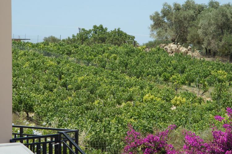 VakantiehuisGriekenland - Kreta: Villa Pelagia  [33]
