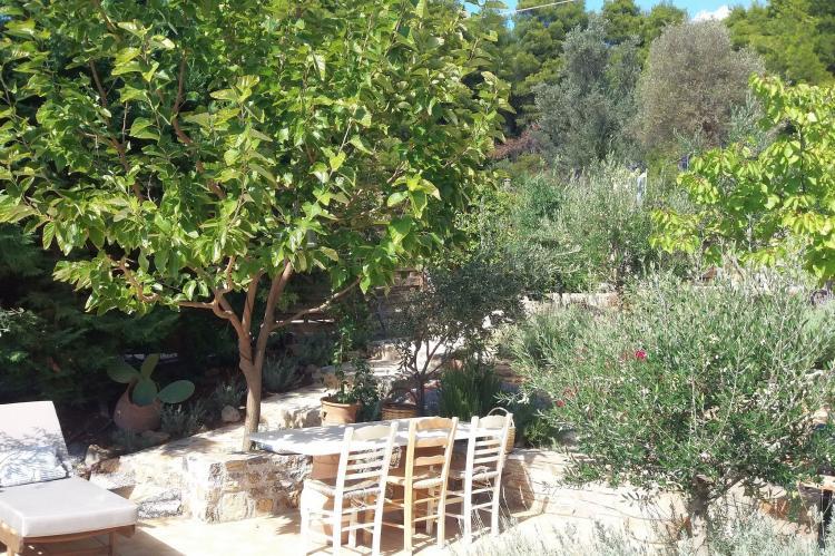 VakantiehuisGriekenland - Centraal-Griekenland: Evia Fox House  [40]