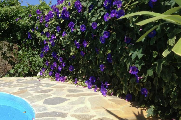 VakantiehuisGriekenland - Kreta: Villa Eleonora  [30]