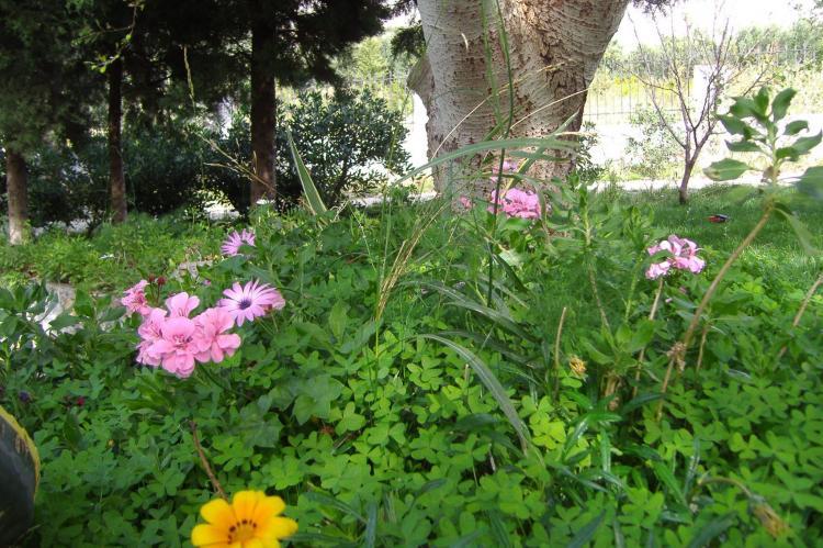 Holiday homeGreece - Crete: Villa Anemos  [32]