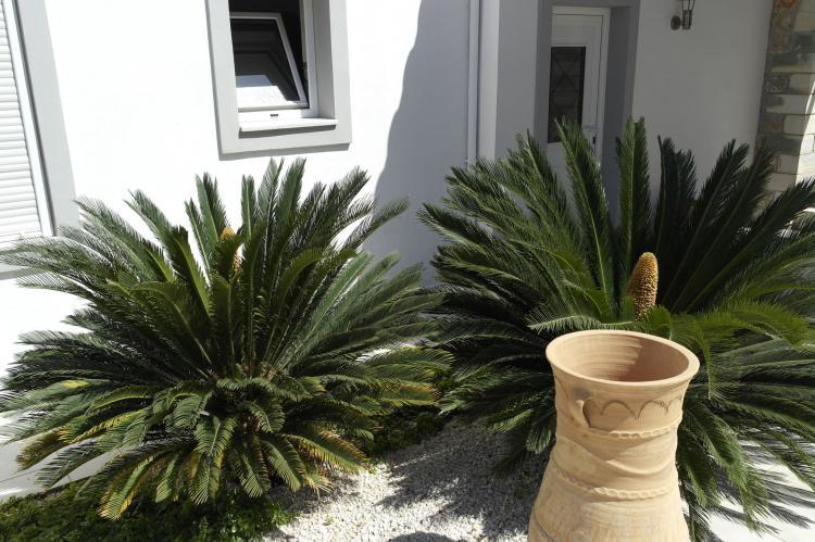 Holiday homeGreece - Crete: Villa Maria II  [39]