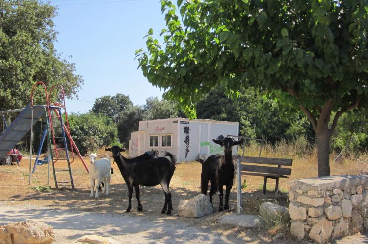 Holiday homeGreece - Crete: Villa Cocoon  [44]