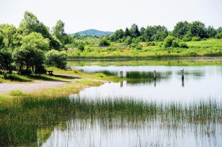 VakantiehuisKroatië - Noord Dalmatië: Holiday house Lovinac  [31]