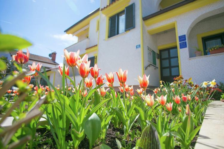 VakantiehuisKroatië - Istrië: Apartment Matosevic III with Roof Terrace - Porec  [16]