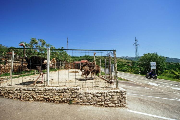 VakantiehuisKroatië - Noord Dalmatië: Casa Gracia  [32]
