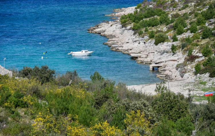 Holiday homeCroatia - Central Dalmatia: Primosten  [9]