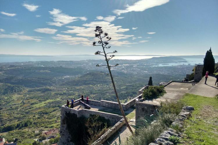 Holiday homeCroatia - Central Dalmatia: Comfy lux apartment  [31]