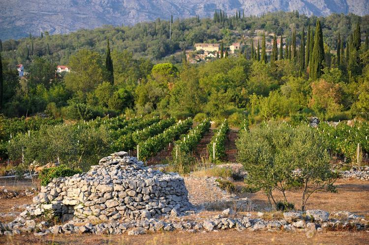 VakantiehuisKroatië - Zuid Dalmatië: Villa Suns  [38]