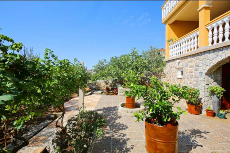 Holiday homeCroatia - Northern Dalmatia: Apartman Mirjana  [19]