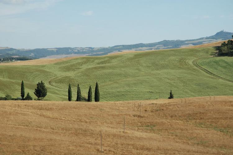 Holiday homeItaly - Tuscany/Elba: Tarugi  [13]