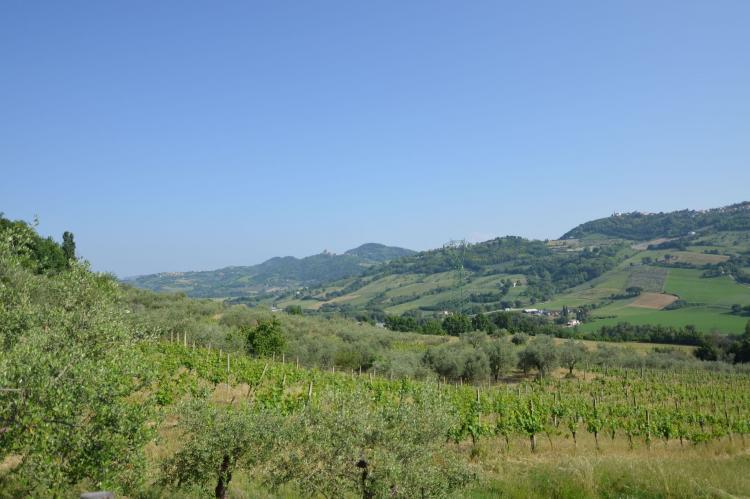 Holiday homeItaly - Emilia-Romagna: Casa Oliva  [9]