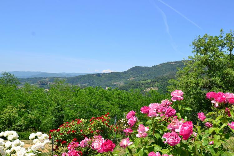 Holiday homeItaly - Tuscany/Elba: Casa Rondò  [33]