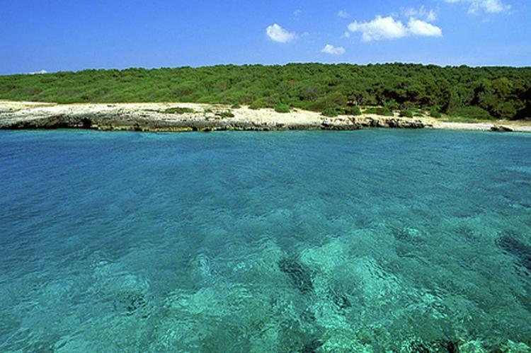 Holiday homeItaly - Apulia: Tre  [36]