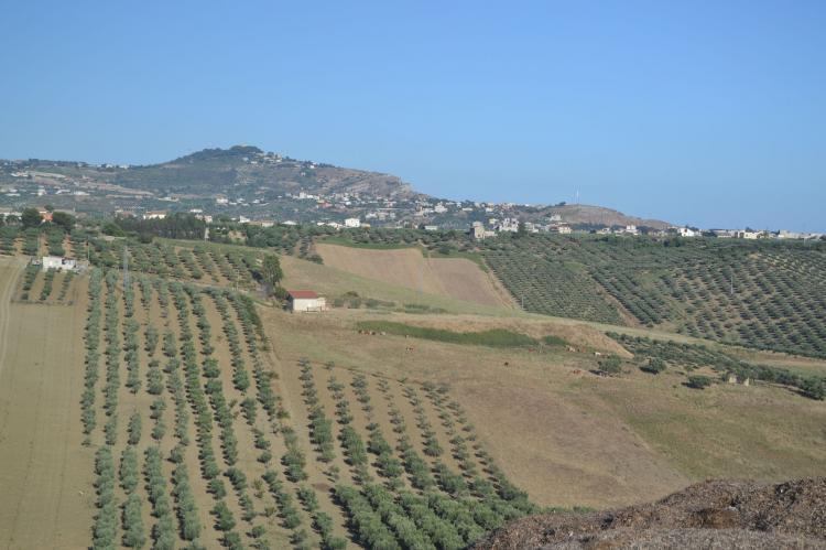 Holiday homeItaly - Sicily: Montalbano  [33]