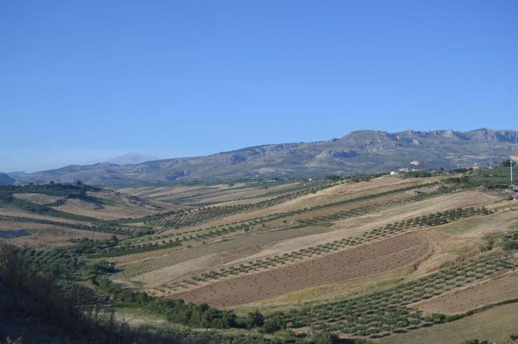 Holiday homeItaly - Sicily: Montalbano  [32]