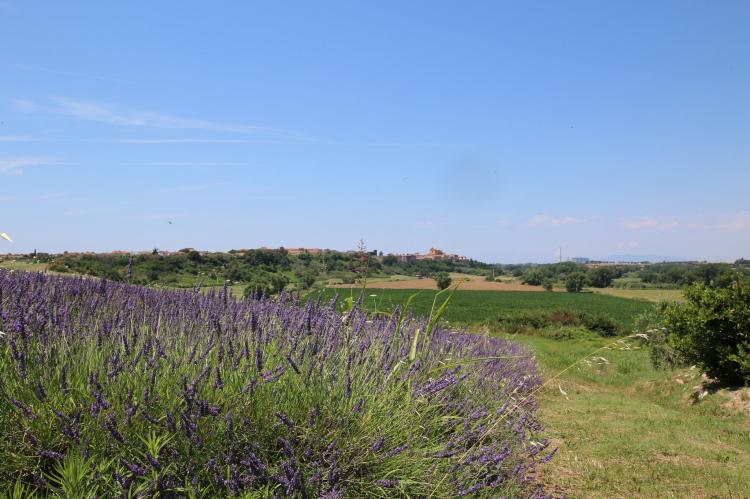 Holiday homeItaly - Lazio/Rome: Ginepro  [30]