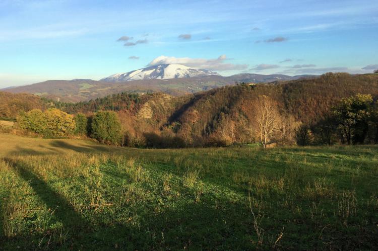 Holiday homeItaly - Umbria/Marche: Gorgaccia  [8]