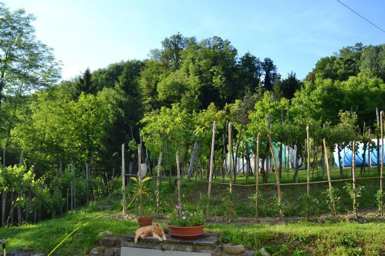 VakantiehuisItalië - Toscane/Elba: Il Pradaccio  [31]