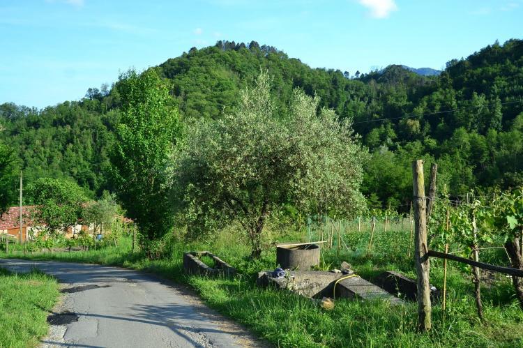 VakantiehuisItalië - Toscane/Elba: Il Pradaccio  [38]