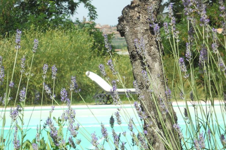Holiday homeItaly - Tuscany/Elba: Poggiolino  [35]
