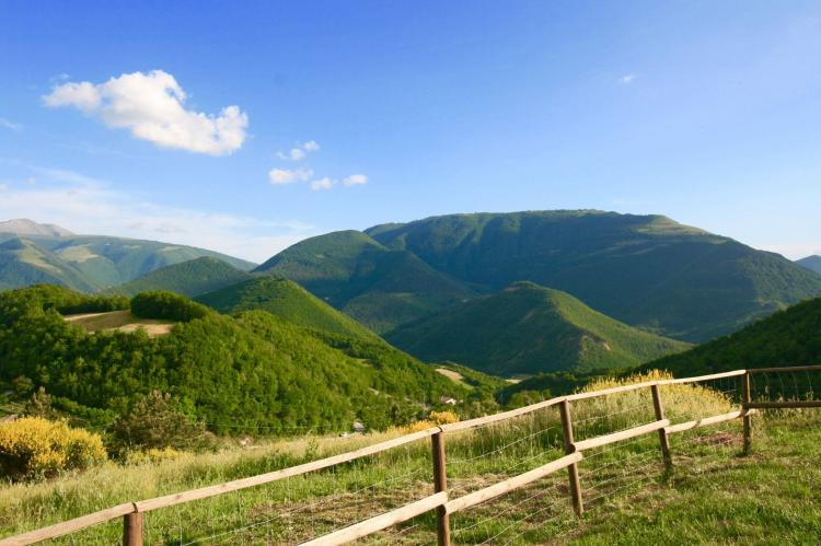 Holiday homeItaly - Umbria/Marche: Salvo  [11]