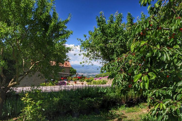 Holiday homeItaly - Tuscany/Elba: Stella  [9]