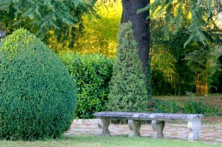 VakantiehuisItalië - Piëmonte: Castello Grimalda - Conchiglie  [25]