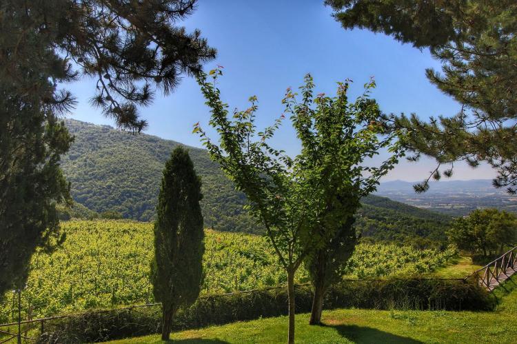 Holiday homeItaly - Tuscany/Elba: Caprifoglia  [40]