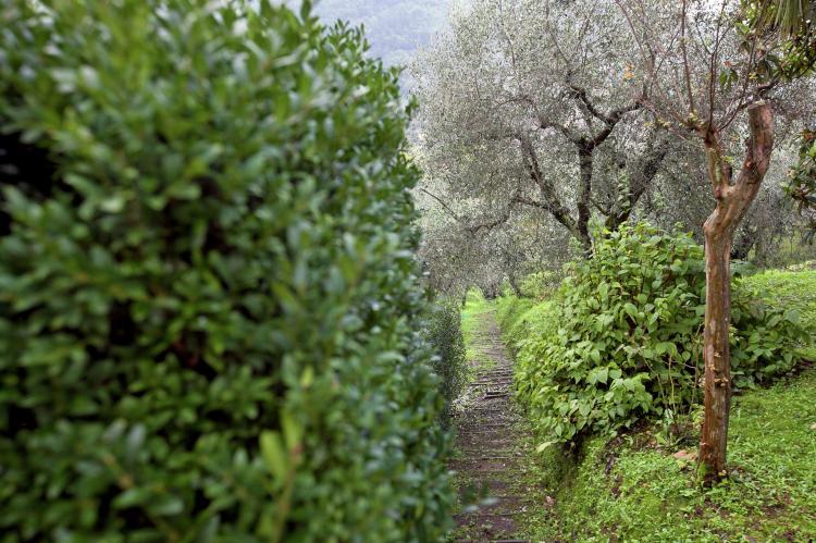 Holiday homeItaly - Tuscany/Elba: Valleriana  [33]