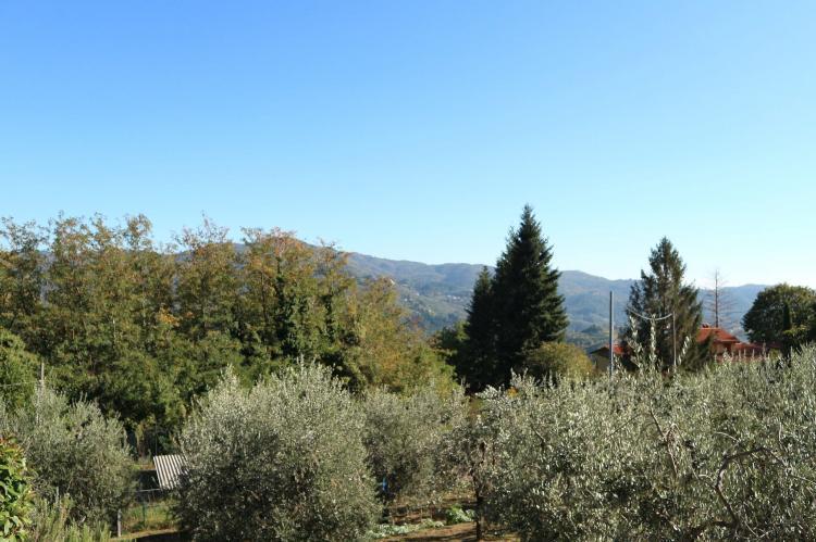 Holiday homeItaly - Tuscany/Elba: Valleriana  [32]