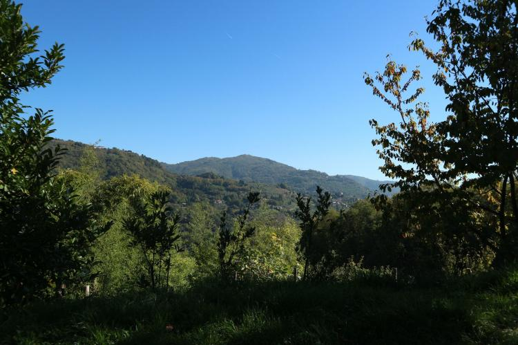 Holiday homeItaly - Tuscany/Elba: Valleriana  [31]