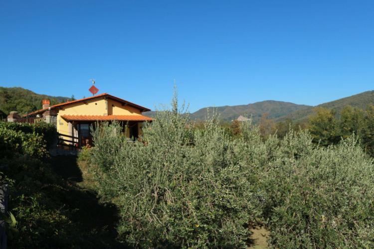 Holiday homeItaly - Tuscany/Elba: Valleriana  [28]