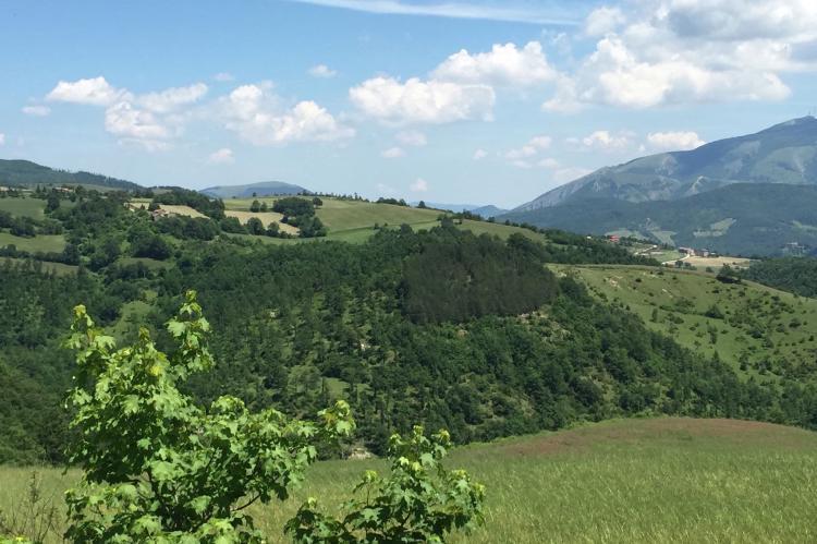 Holiday homeItaly - Umbria/Marche: Tartufo  [35]