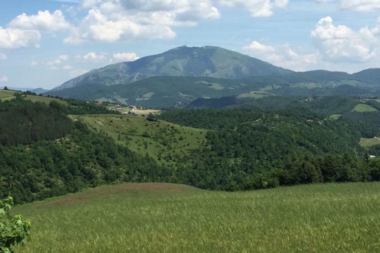 Holiday homeItaly - Umbria/Marche: Tartufo  [38]