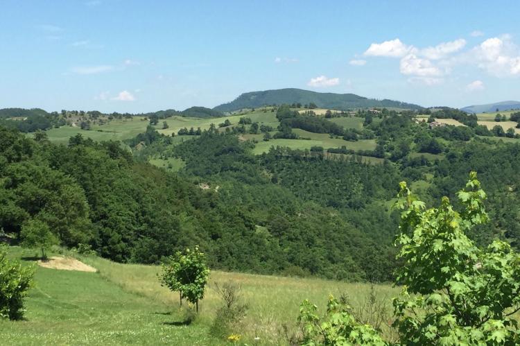 Holiday homeItaly - Umbria/Marche: Tartufo  [37]