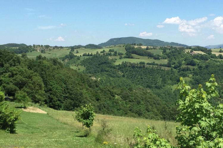 Holiday homeItaly - Umbria/Marche: Tartufo  [40]