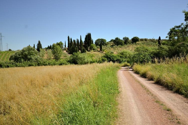 VakantiehuisItalië - Toscane/Elba: Bellavista  [35]