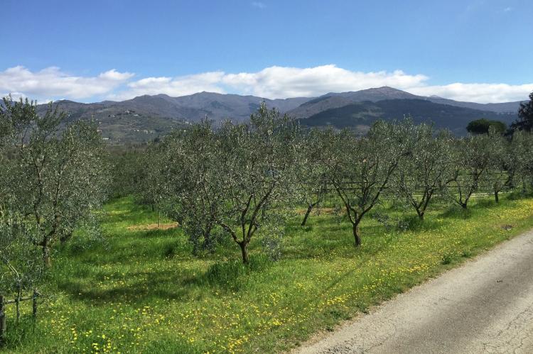 VakantiehuisItalië - Toscane/Elba: Monna Due  [8]