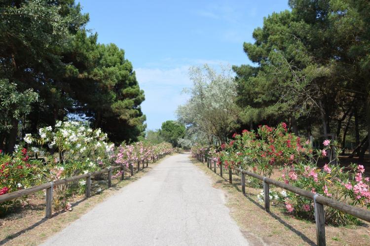 Holiday homeItaly - Emilia-Romagna: Case Mobili Mimosa  [35]